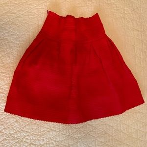 Anthropologie Skirt Size Extra Small